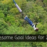 Goal Ideas for 2017