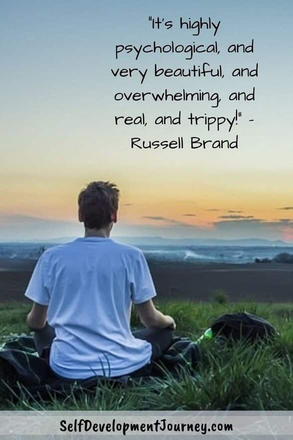 Funny meditation quotes - It's highly psychological, and very beautiful, and overwhelming, and real, and trippy! - Russell Brand